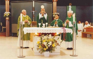 A typical Novus Ordo Mass (Mass of Pope Paul VI). Note the celebration is versus populam (
